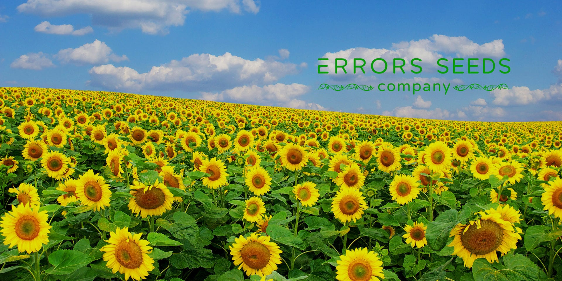 ERRORS-SEEDS