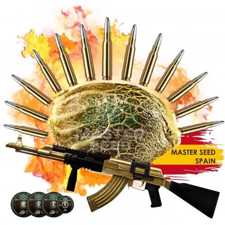 Семечко Auto AK-47 от Master-Seed Испания
