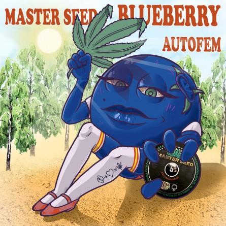 Семечко Auto Blueberry от Master-Seed Испания